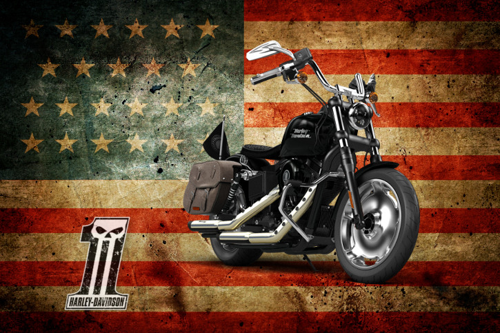 Military Rider Course For Veterans Near Spring Hill Inverness